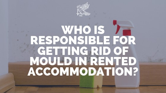 Who Is Responsible For Getting Rid Of Mould In Rented Accommodation?